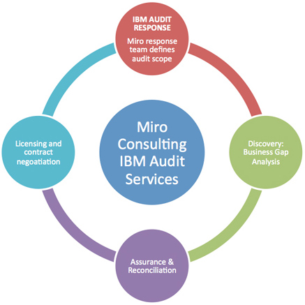 MIro Consulting IBM Audit Services